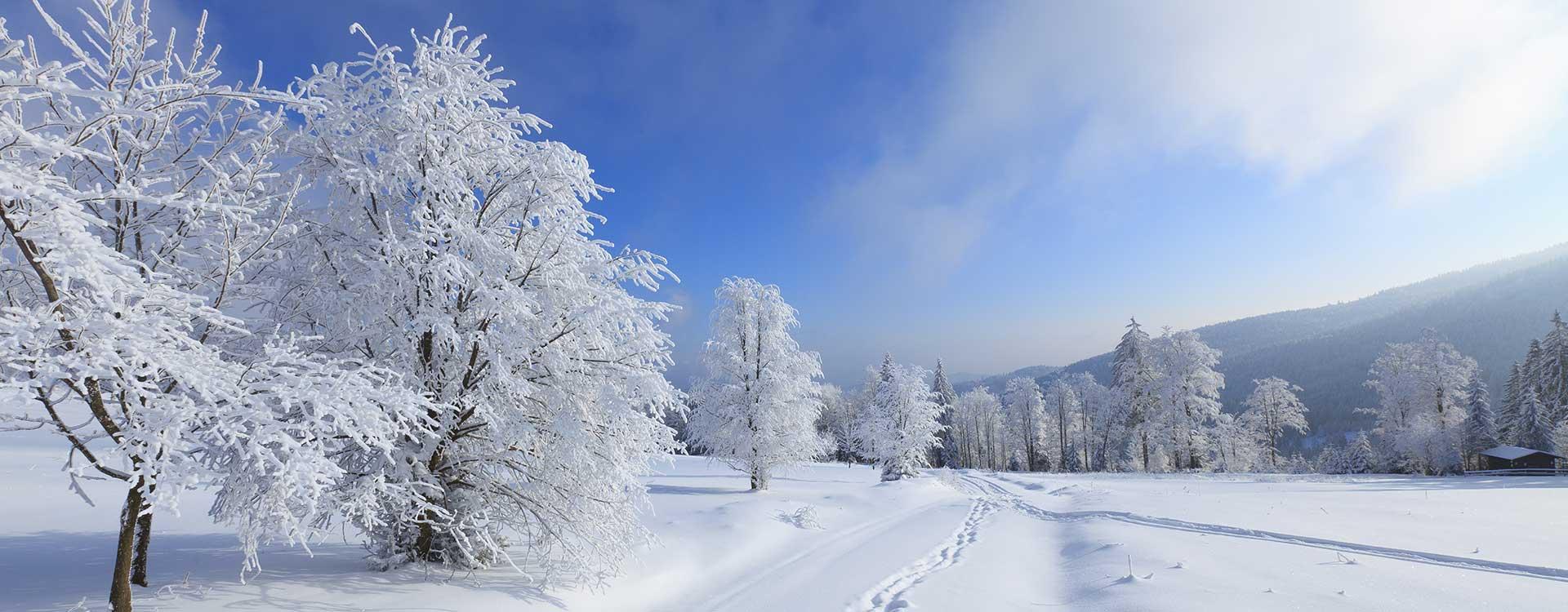 winterlandschaft_1920x750_slider